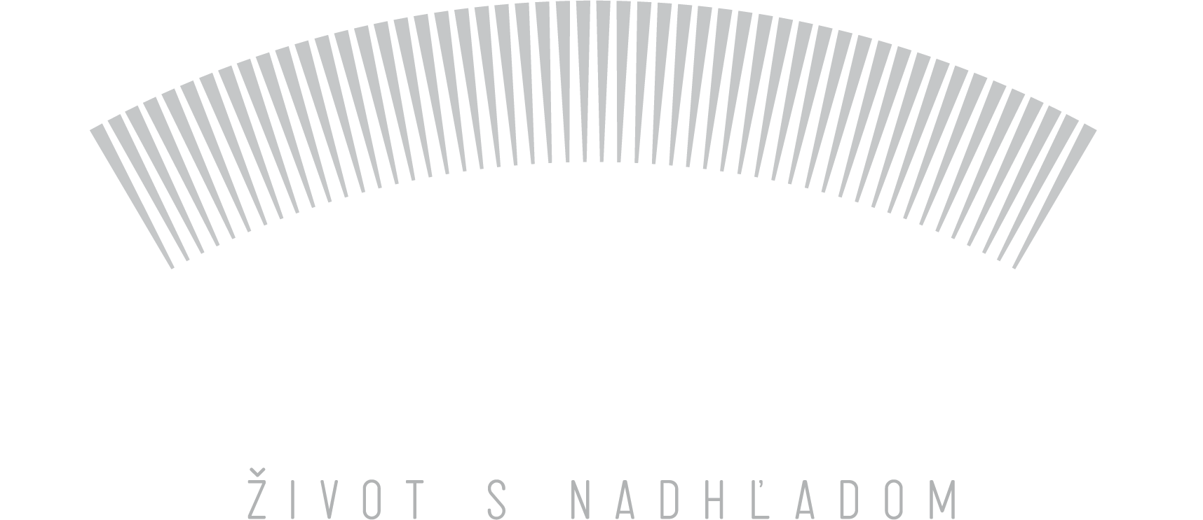 panorama city logo